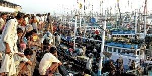 The morning fish auction at Mumbai's Ferry Wharf. Thousands of boats fish along the coast, putting acute pressure on fish stocks (Photo: lecercle, Creative Commons via Flickr)