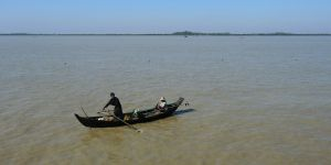 A fisher in the Ayeyarwady Delta, Myanmar. hilsa stocks are increasingly threatened by overfishing and habitat destruction (Photo: Axel Drainville, Creative Commons, via Flickr)