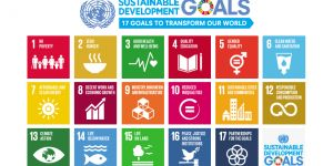 The UN poster showing all 17 sustainable development goals (Image: UN photo)