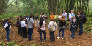 The Forest and Farm Facility is now working with Ecuador forest farm producers such as this bamboo production business