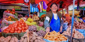 A Bolivian woman stallholder sells potatoes and other vegetables. Bolivian diets are changing, moving away from traditional foods and towards processed foods (Photo: Mauricio Panozo, Lucano Photography)