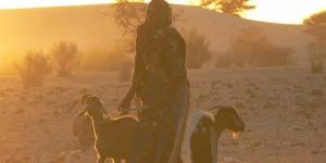 A woman stands with her goats in a dryland area in Niger.