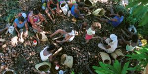 Women gather together to break up the Babacu palm nuts they have collected (Photo: JcPietro, Creative Commons via Wikimedia)