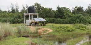 A solar-powered building alongside wetland