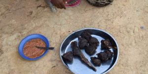 The meat from a duiker is prepared for a meal, close to the Dia Faunal Reserve, Cameroon (Photo: Stephanie Brittain)