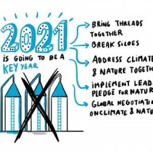 "An illustration with the words: ""2021: this is going to be a key year"" linking to 1. Bring threads together 2. break siloes 3. address climate change and nature together 4. implement leader's pledge for nature 5. global negotiations on climate and nature"