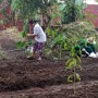 People stand and squat in a yard of soil