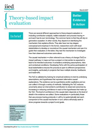 Theory-based impact evaluation
