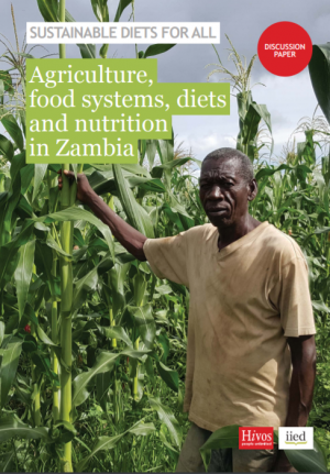 Agriculture, food systems, diets and nutrition in Zambia