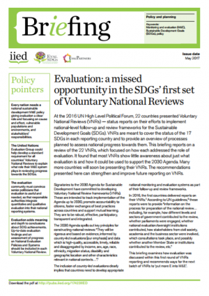 Evaluation: a missed opportunity in the SDGs' first set of Voluntary National Reviews