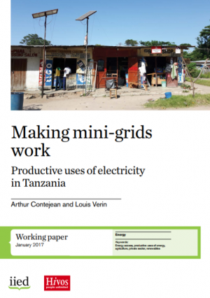 Making mini-grids work: productive uses of electricity in Tanzania
