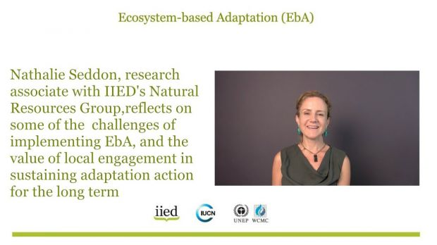 IIED research associate Nathalie Seddon discusses nature-based solutions to climate change in a video interview (Photo: IIED)
