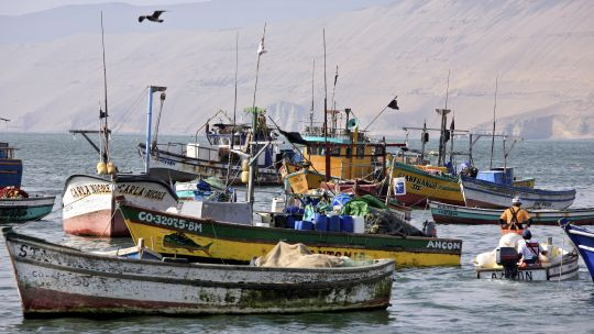 The small town of Ancon in Peru is home to more than 400 small-scale fishers. Small-scale fisheries account for 80 percent of the country's seafood consumption. (Photo: Alex Proimos, Creative Commons via Flickr)