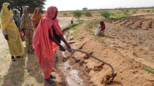 Low-cost water management techniques can help farmers be more resilient (Photo: Practical Action)