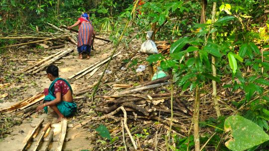 Indigenous women in Bangladesh's Lawachara National Park collecting wood for building (Photo: Fabian Lambeck, Creative Commons via Wikipedia)