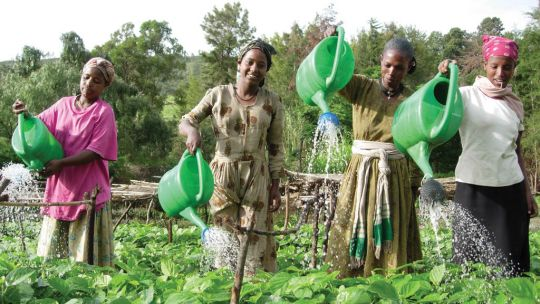 Ethiopia has suffered severe droughts in recent years. Community projects to managing water resources are vital to building climate resilience (Photo: Freweni Gebre Mariam/IFPRI, Creative Commons via Flickr)