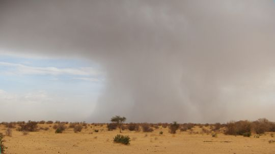 A dust storm looms over the drylands of the Sahel (Photo: Marie Monimart/IIED)