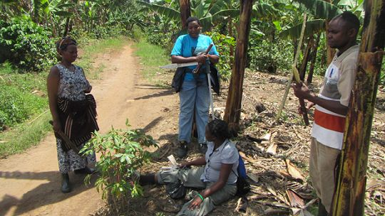 Community technicians and coordinators in Uganda chat with a local farmer during a monitoring visit. These discussions are a key connection between the technical and local worlds in carbon forestry (Photo: Geoff Wells)