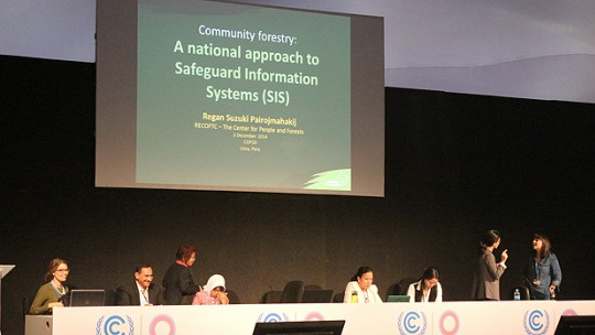 Marisa Carmargo presents approaches to equity in forest governance: Lessons for safeguard development at an event at COP20 in Lima (Photo: Donal Yeang via Flickr)