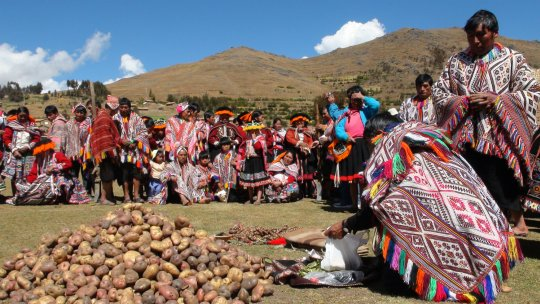 A pile of potatoes is surrounded by people in colourful clothes