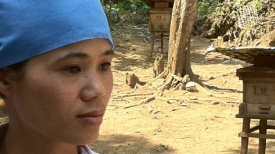 Ha Thi Ngan, a beekeeper, surrounded by her bee hives.