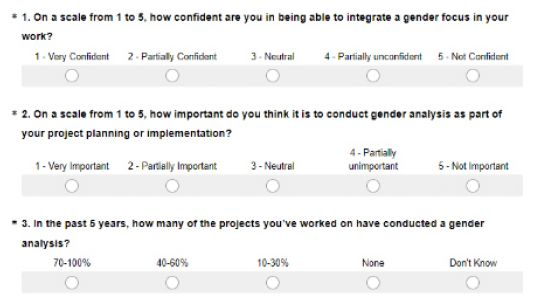Three of the questions on IIED staff have been asked in an internal gender survey (Image: IIED)