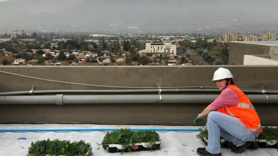 A woman on a roof with plants