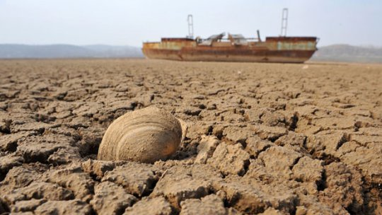 The cracked mud of a dried-up reservoir bed, with a dead river-mussel shell in the foreground and an abandoned boat in the background