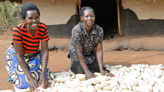 Two women spreading maize on the ground
