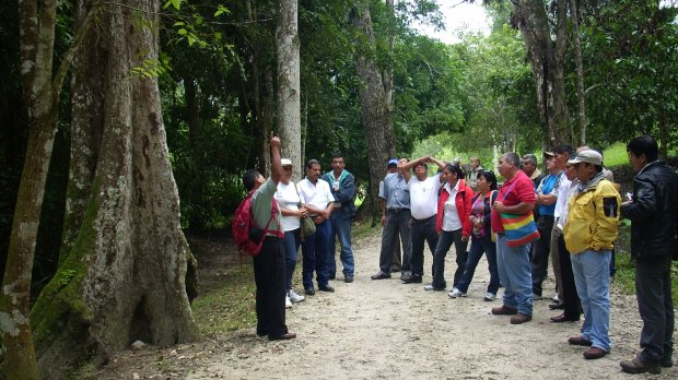 This Guatemala-Peru exchange visit was part of a project that promoted partnerships and networking for forestry-dependent communities