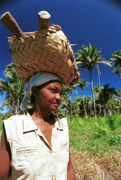 The Babacu Fund is supporting women leaders and entrepreneurs from nut collector communities (Photo: JcPietro, Creative Commons via Wikimedia)