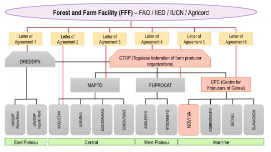 Organogram of Forest and Farm Facility support to different levels of forest and farm producer organisations